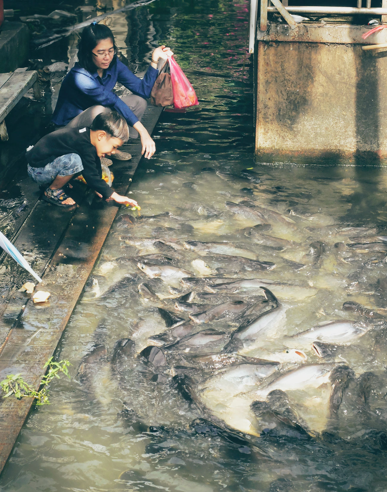 floating-market-kids-and-fish